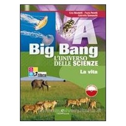 BIG BANG (A+B+C+D) +LIBRI DIGITALI