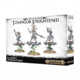 tzaangor-enlightened-tzeentch-arcanites-arhammer-age-of-sigmar-games-orkshop-3-miniature-citadel-e