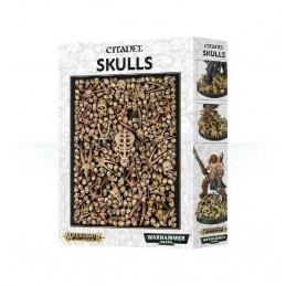games-orkshop-citadel--arhammer-citadel-skulls-nuovo