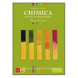 CHIMICA TUTTO SI TRASFORMA X BN LIC.