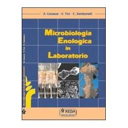 microbiologia-enologica-in-laboratorio