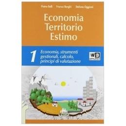 economia-territorio-estimo-volun