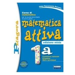 MATEMATICA ATTIVA ED.MISTA 2A+2B