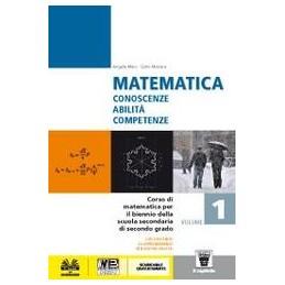 matematica-1--libro-digitale--vol-1