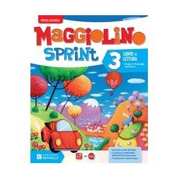 maggiolino-sprint-3--vol-3