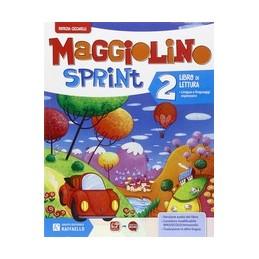 maggiolino-sprint-2--vol-2