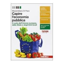 capire-leconomia-ldm-ruolo-unione-europea-stato-e-enti-locali-nel-sistema-economico-vol-2