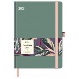 cool-diary-safe-green-2021-cm-16x22