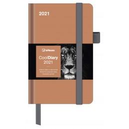 cool-diary-caramel-2021-cm-88x142