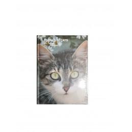 agenda-giornaliera-2021-cats-12-mesi-pocket-13x9-cm