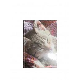 agenda-giornaliera-2021-kittens-12-mesi-pocket-13x9-cm