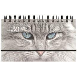 agenda-spiralata-2021-cats-settimanale-orizzontale-8x14-cm