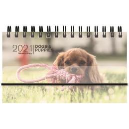 agenda-spiralata-2021-dogs--puppies-settimanale-orizzontale-8x14-cm