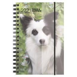 agenda-spiralata-2021-dogs--puppies-giornaliera-11x165-cm