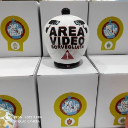 salvadanaio-area-video-rorvegliata