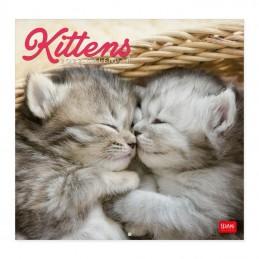 calendario-da-parete-2022-formato-30x29cm-kittens