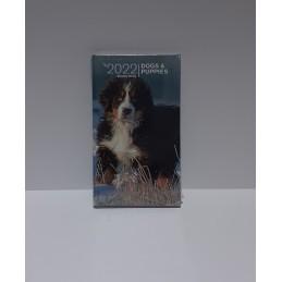 agenda-2022-dogs--puppies-settimanale-copertina-rigida-8x145-cm