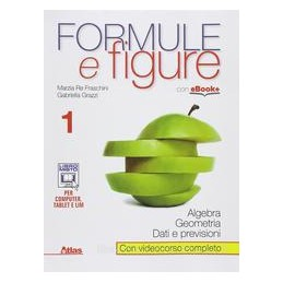 FORMULE E FIGURE 1 X BN LIC.